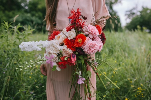 garden roses, larkspur, poppy and bee balm bouquet by Erin Ostreicher Designs | Katie Jean Photos